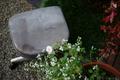 庭風景_廃棄するスチール椅子_181015