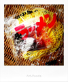 田中屋製麺所の生ラーメン_190202