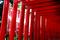 津島神社稲荷_181209