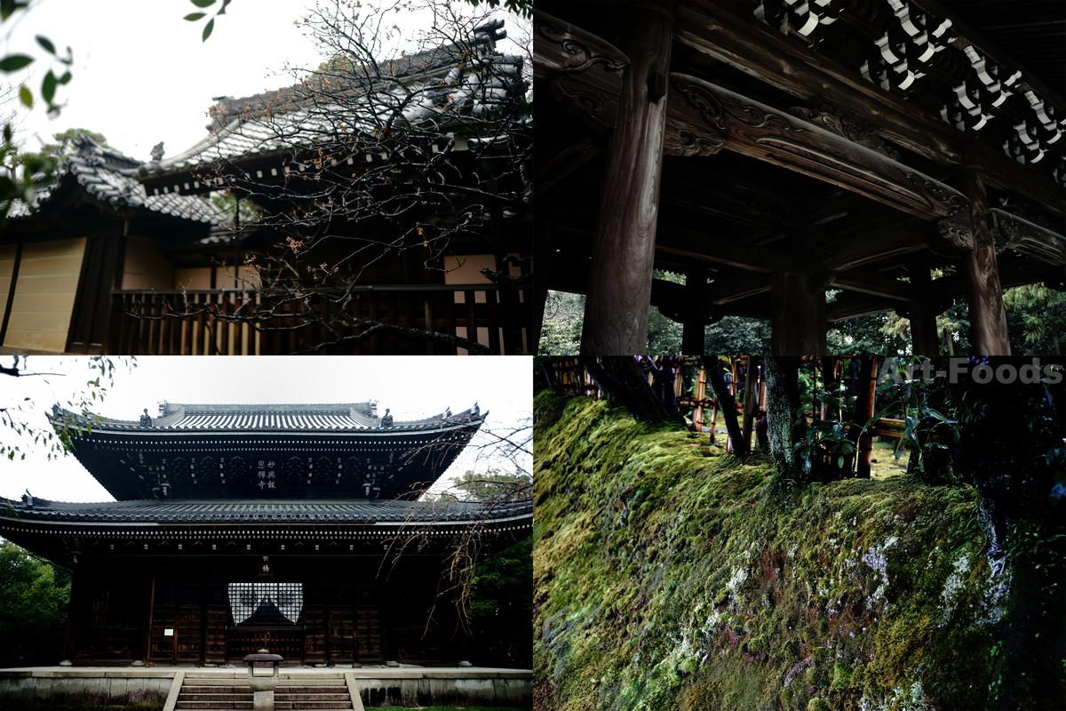 妙興寺山門と佛殿_190321