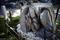 日吉神社-13-子産石_190324