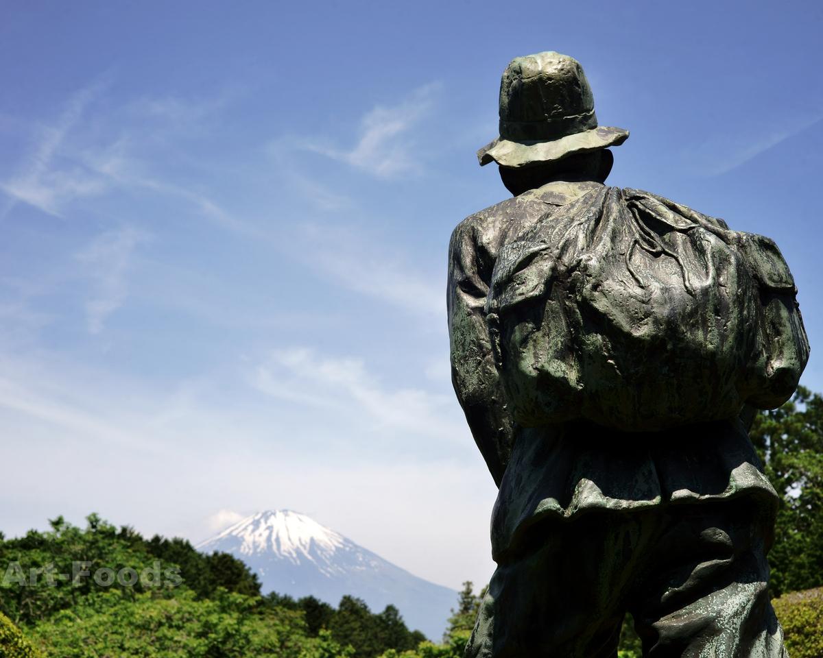 秩父宮殿下銅像と富士山_190526