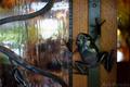 プレーンツリー入口ドアのカエル_190714