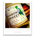 RAINBOW LORIKEET _200130