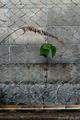 シュールな金網風景_200409