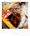 真鯛アラ_200423
