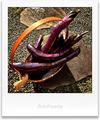 長茄子の収穫_200906