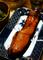 鮭の塩麹漬_200927