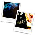 VIN de BLEU _201009