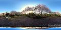 桜に囲まれた庭_210331