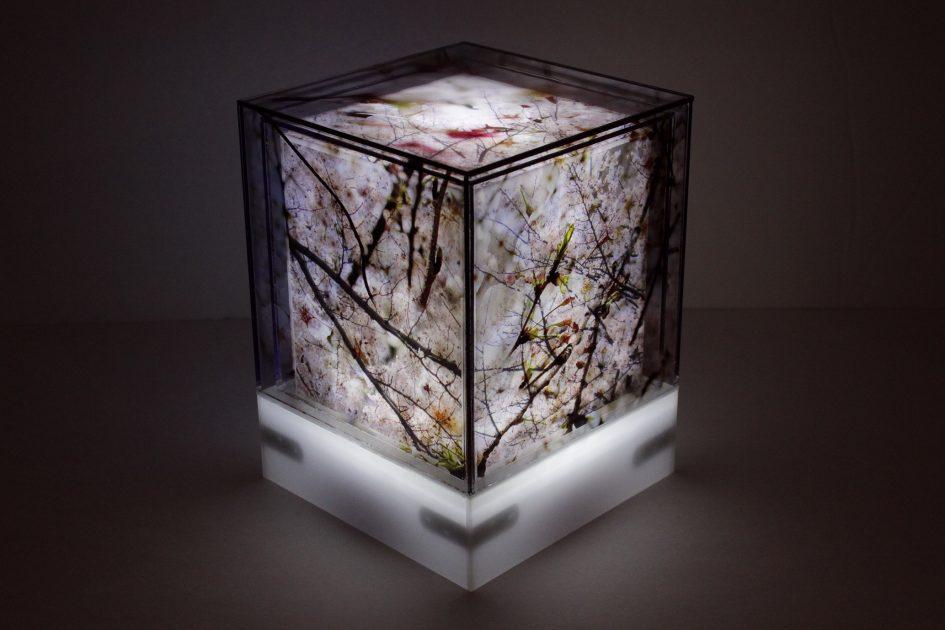 花輪奈穂個展「カーブをぬけると、そこは」