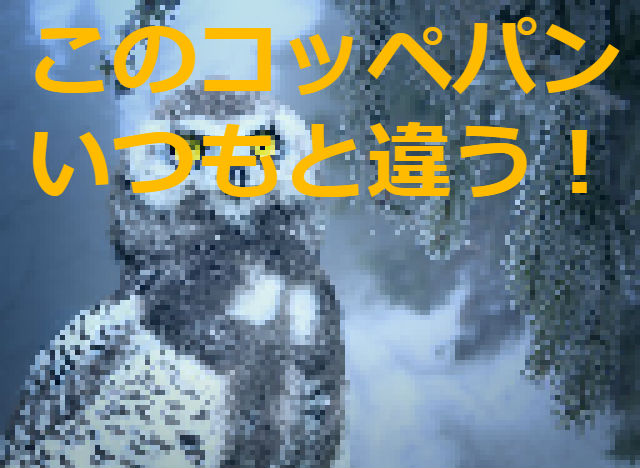 f:id:arufred45Hoo:20180308020253j:plain