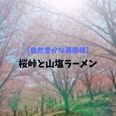 f:id:arukaru:20190508131826j:plain