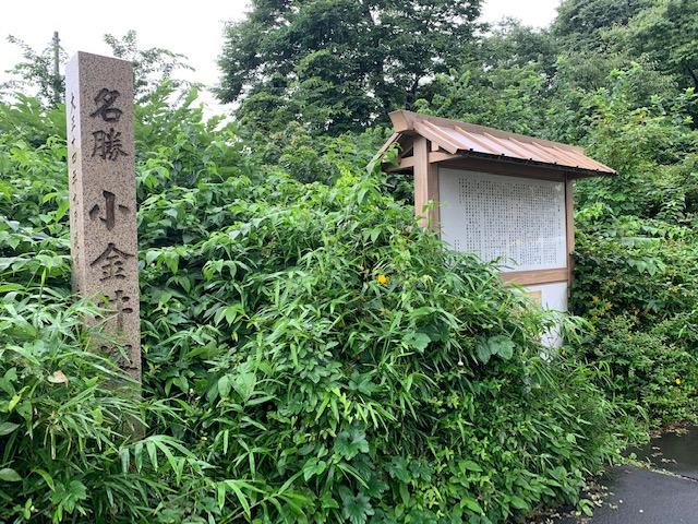 f:id:arukiroku_1974:20200726123026j:plain