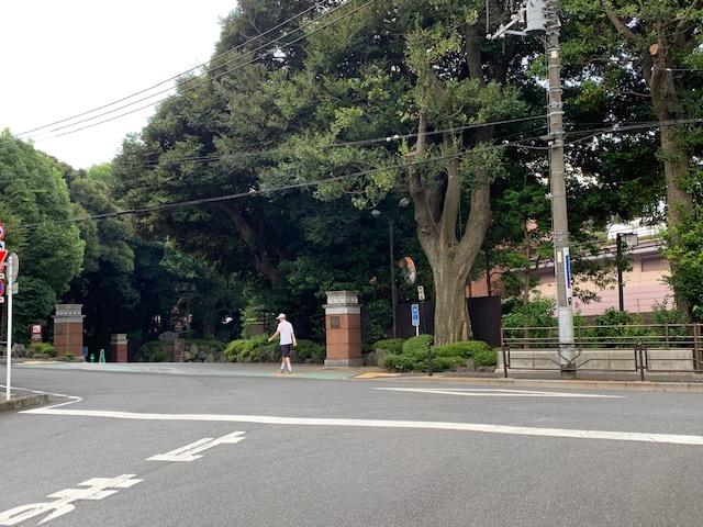 f:id:arukiroku_1974:20200816140842j:plain