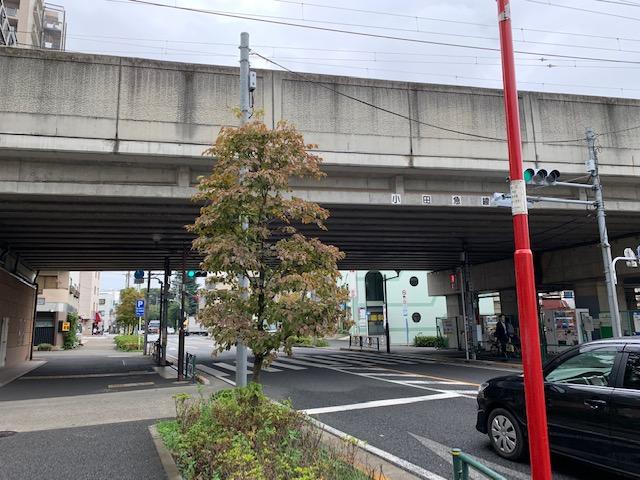 f:id:arukiroku_1974:20200924145334j:plain