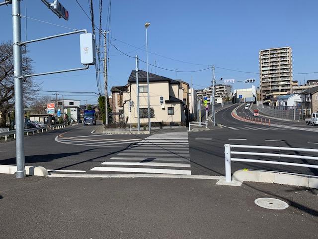 f:id:arukiroku_1974:20210318220520j:plain