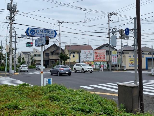 f:id:arukiroku_1974:20210607221350j:plain