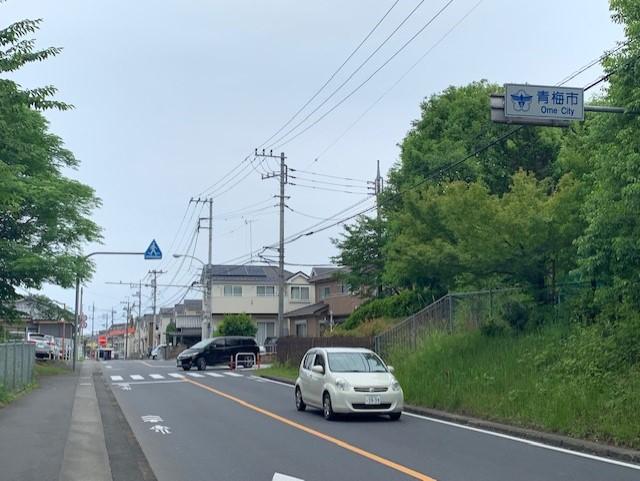 f:id:arukiroku_1974:20210610112340j:plain