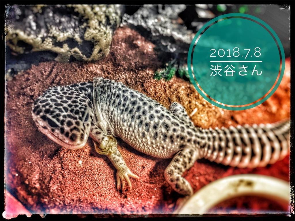 f:id:arukublog:20180721223341j:image