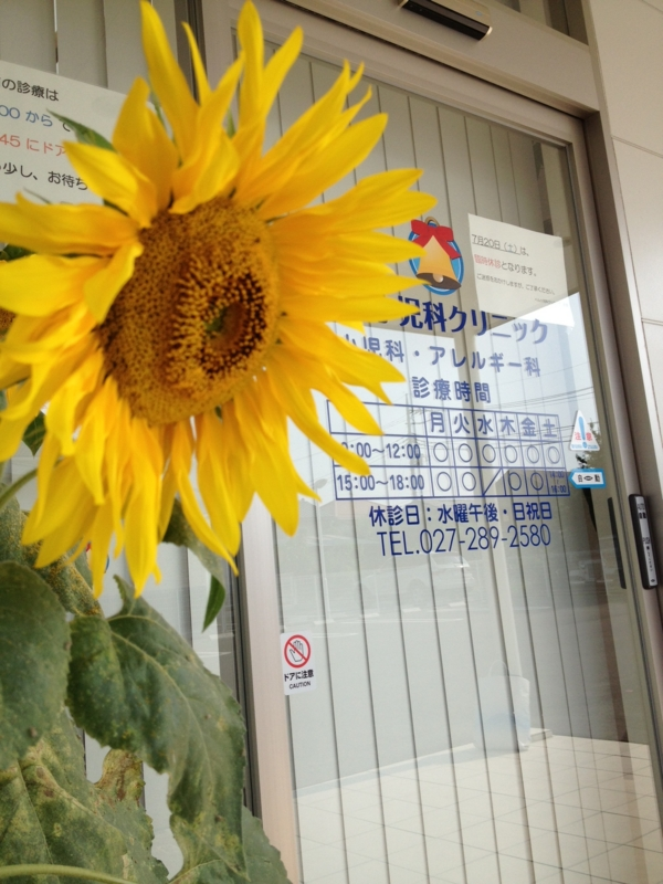 f:id:arushounikai:20130712075328j:image:w360