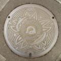 [manholecover][奈良県]吉野郡吉野町のマンホールのふた