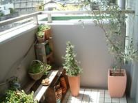 f:id:asacafe:20060425012705j:image
