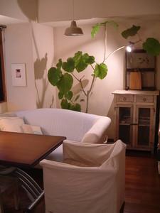 f:id:asacafe:20060730002332j:image