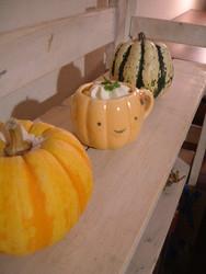 かぼちゃ仲間