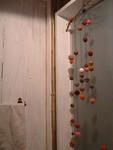 サルンポワクのトイレ