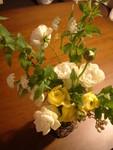 白いバラと黄色いラナンキュラス