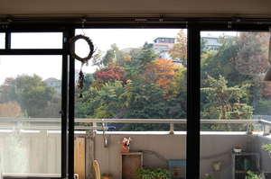 家の窓から見える紅葉