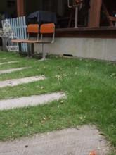 f:id:asacafe:20091017014643j:image
