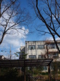 f:id:asacafe:20100204230842j:image:right
