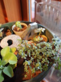 f:id:asacafe:20100208010814j:image