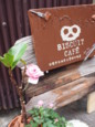 f:id:asacafe:20100309222455j:image