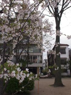 f:id:asacafe:20100409233526j:image