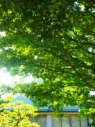 f:id:asacafe:20100906015650j:image