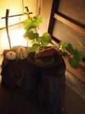 f:id:asacafe:20101011102132j:image