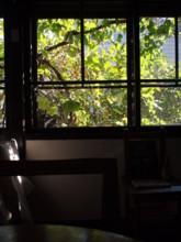 f:id:asacafe:20101025235533j:image