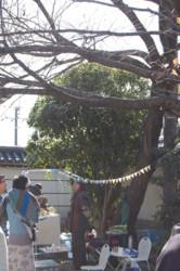 f:id:asacafe:20101206072950j:image