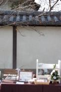 f:id:asacafe:20101206082001j:image