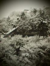 f:id:asacafe:20110215003426j:image