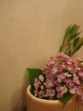 f:id:asacafe:20110628013425j:image