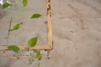 f:id:asacafe:20110908000916j:image