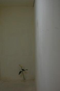f:id:asacafe:20110930111447j:image