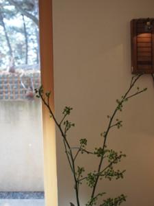 f:id:asacafe:20120119123853j:image:left