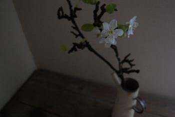 f:id:asacafe:20120310034119j:image