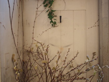 f:id:asacafe:20120320064556j:image