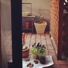 f:id:asacafe:20121109080252j:image